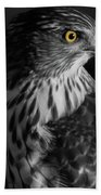 Coopers Hawk Bw Beach Towel