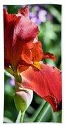 Copper Iris Squared 1 Beach Towel