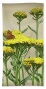 Copper On Yellow - Butterfly - Vignette 2 Beach Towel