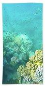 Coral Beach Towel by Debbie Cundy