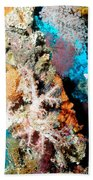 Coral Pillars Beach Towel