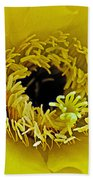 Core Of A Yellow Cactus Flower At Pilgrim Place In Claremont-california Beach Towel
