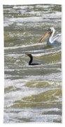 Cormorant And Pelican Beach Towel
