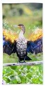 Cormorant Dries Its Wings Beach Towel
