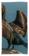 Cormorant Wings Beach Towel