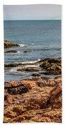 Cormorants And Seagulls Resting Beach Towel