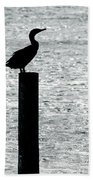 Cormorants Port Jefferson New York Beach Towel