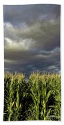 Corn Field Beform Storm Beach Towel