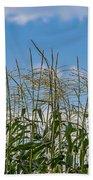 Corn Tassels In The Sky Beach Towel