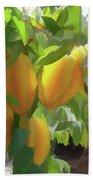 Costa Rica Star Fruit Known As Carambola Beach Towel
