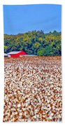 Cotton And The Red Barn Beach Towel