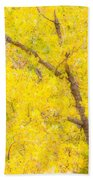 Cottonwood Colors  Beach Towel