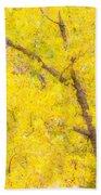 Cottonwood Colors  Beach Sheet