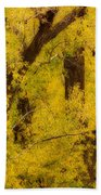 Cottonwood Fall Foliage Colors Abstract Beach Towel