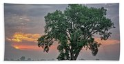 Cottonwood Pasture 2 Beach Towel