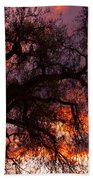 Cottonwood Sunset Silhouette Beach Towel