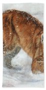 Cougar In The Snow Beach Towel