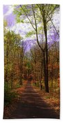 Country Road In Autumn Beach Towel