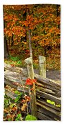 Country Road In Autumn Forest Beach Towel