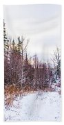 Country Winter 6 Beach Towel