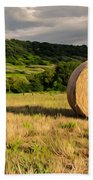 Countryside Of Italy 3 Beach Towel