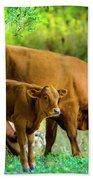 Cow And Calf Beach Towel