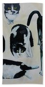 Cow Cats Beach Towel