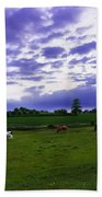 Cow Field Beach Towel