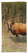 Cow In The Field Beach Towel