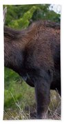 Cow Moose-signed-#4016 Beach Towel