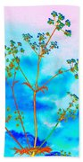 Cow Parsley Blossom 2 Beach Towel