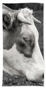 Cow Portrait Beach Towel