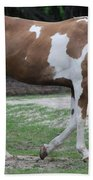 Cow Spotted Horse Beach Towel