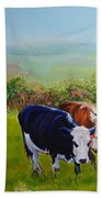 Cows And English Landscape Beach Towel