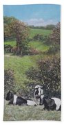Cows Sitting By Hill Relaxing Beach Towel
