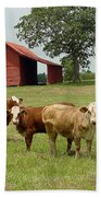 Cows8954 Beach Towel
