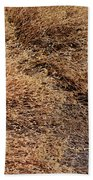 Coyote Brush Beach Towel