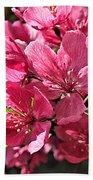 Crab Apple Blossoms 04302015-1 Beach Towel
