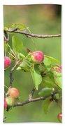 Crab Apple Fruit Beach Sheet