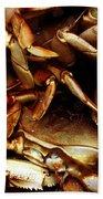 Crabs Awaiting Their Fate Beach Towel