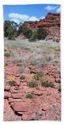 Cracked Earth And Yellow Flowers Beach Towel