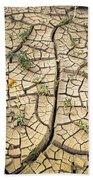 317805-cracked Mud Patterns  Beach Towel