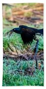 Grackle In The Morning  Beach Towel