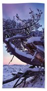 Craters Of The Moon Beach Towel