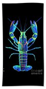 Crawfish In The Dark - Blublue Beach Towel