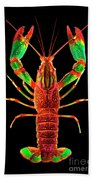 Crawfish In The Dark - Rouillegreen Beach Towel