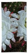 Created By A Cactus Beach Towel