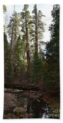 Creek And Giant Sequoias In Kings Canyon California Beach Towel
