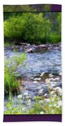 Creek Daisys Beach Towel