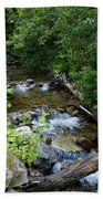 Creek On Mt. Spokane 1 Beach Towel